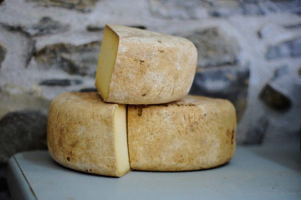 tipos de quesos